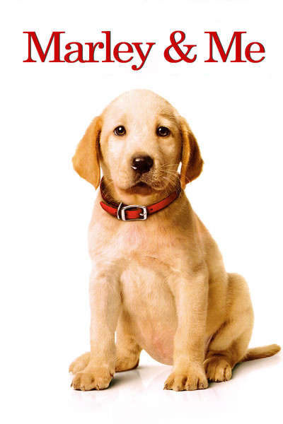 marley and me book review