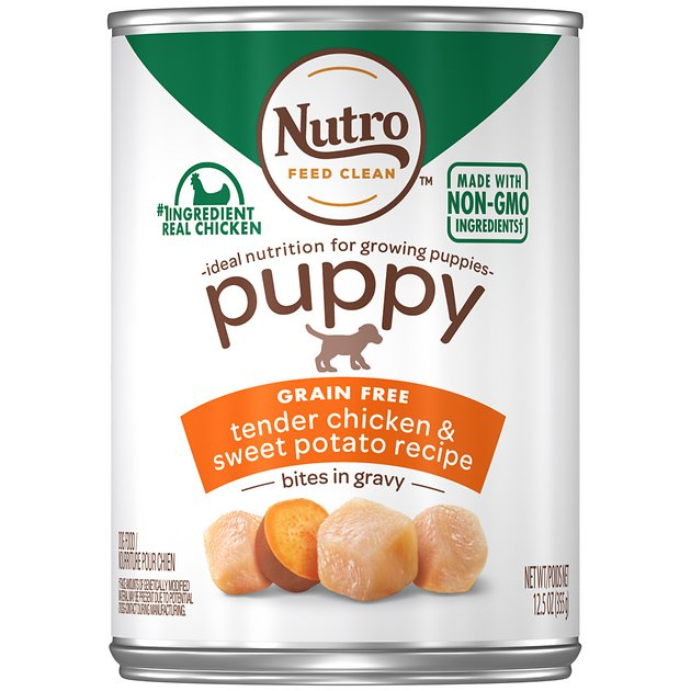 nutro large breed puppy food reviews