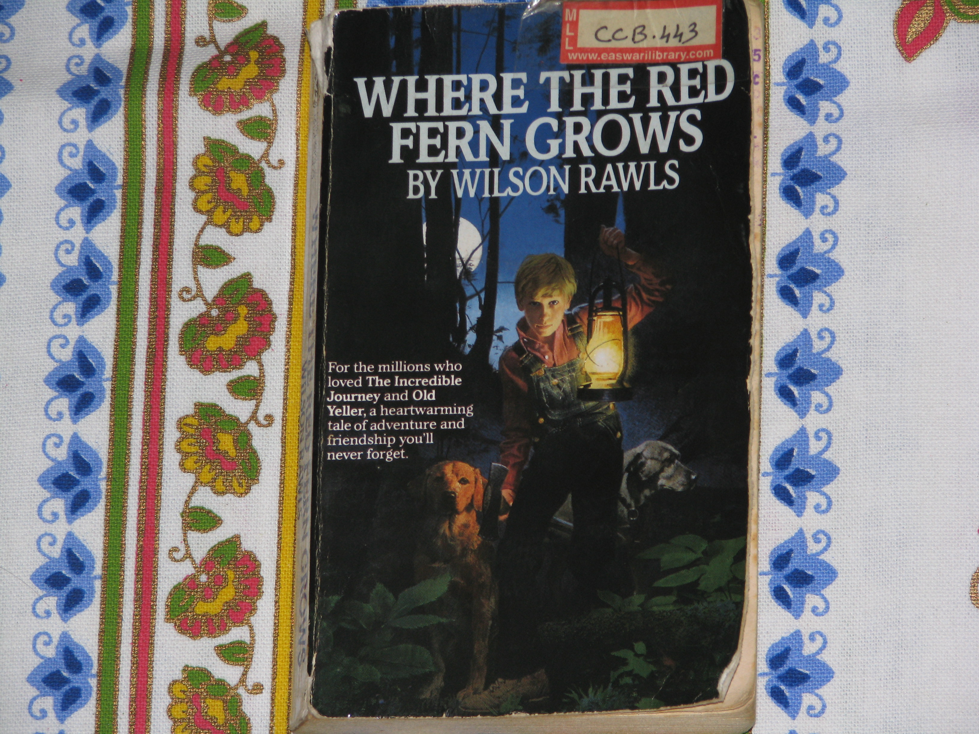 where the red fern grows book review